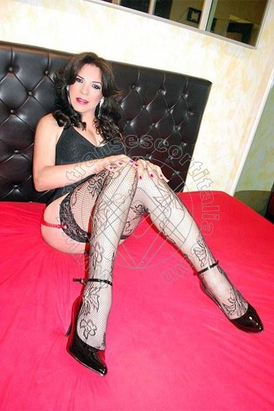 Alondra VIBO VALENTIA 3460448737